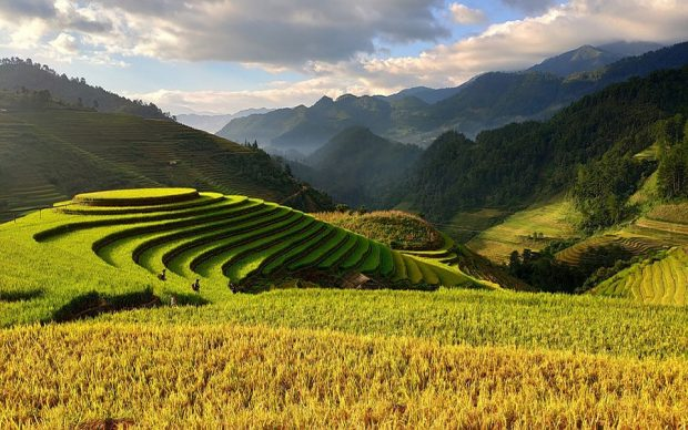 Cap sur le Vietnam et ses attractions les plus impressionnantes