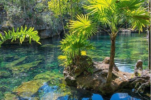 Visiter le Mexique dans le respect de son merveilleux patrimoine environnemental