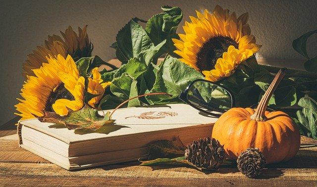 Fleurs et plantes comestibles: une nouvelle mode d'alimentation?